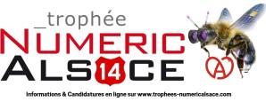 Trophées Numeric'Alsace 2014
